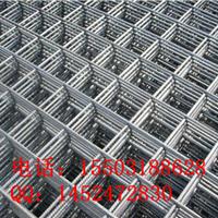 供应喷塑电焊网片  白色吊顶网片  网片用途
