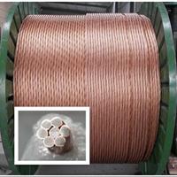 镀铜钢绞线宁夏价格最优惠|银川铜包钢绞线