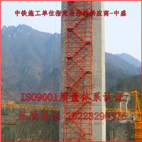 桥梁高墩施工爬梯 金中盛厂家专业生产