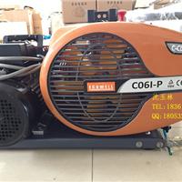 供应CO6P-I加拿大充气泵