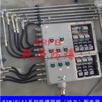 供应BXM(D)53系列防爆照明(动力)配电箱