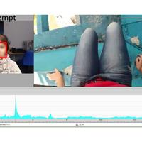 FACET面部表情分析系统(图)