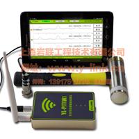 供应全网最低价语音低应变YL-PIT(W)
