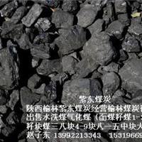 出售煤炭陕西神木五二气化煤榆林面籽块煤