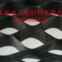 供应山东柘达土工格室钢塑土工格栅土工材料