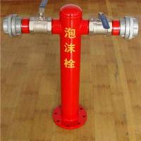 供应PMS100/65-1.6室外泡沫消火栓