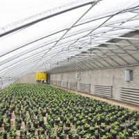 供应潍坊最专业最优秀的智能温室建设