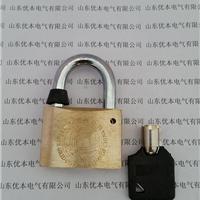 电力表箱锁 40梅花铜锁