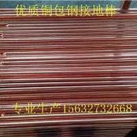 供应蓝泽铜包钢接地极质量最好价格最低