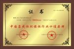 中国集成环保灶行业十佳品牌