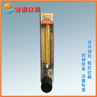 DK800系列玻璃转子流量计 热处理炉甲醇流量