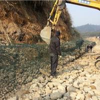锌铝合金PVC覆塑固滨笼 河坝梯形坡固滨笼