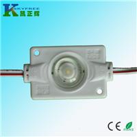 供应3030LED注塑模组,1W大功率LED模组