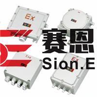 BXJ51防爆接线箱 增安型接线箱 BXJ51系列