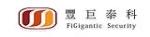 深圳市丰巨泰科电子有限公司