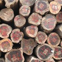 供应铁木豆原木
