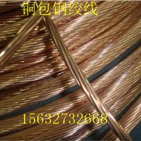 供应铜包钢绞线-河北最低价格