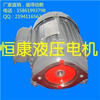 供应江苏 盐城VP20泵用电机