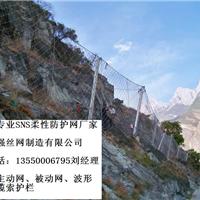 RX025被动防护网