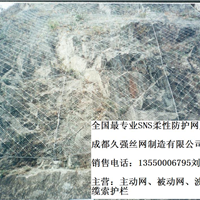 重庆GPS2主动防护网
