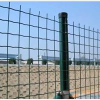 四川哪里卖绿色铁丝围栏包塑铁丝围栏的价格