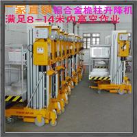 小型升降机 桅柱升降机 厂家批发 全国到货