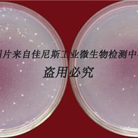 供应AEM5700-T 涂料抗菌剂