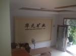 安徽华元矿业有限公司