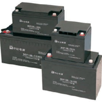 台达蓄电池12V100AH