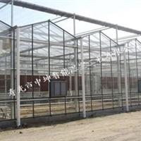 供应寿光最专业的温室大棚智能温室建设