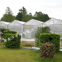 供应潍县最专业最优秀的的温室大棚建设