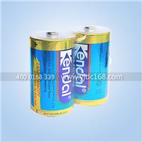 最大尺寸干电池选永劲1号碱性干电池A品直销