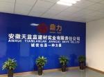 安徽天蓝蓝建材实业责任有限公司