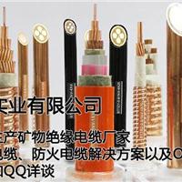 广东南方电缆实业有限公司