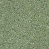 印象龙地板 环保型幼儿园学校塑胶PVC地板