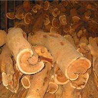 大量供应檀香木