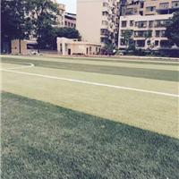 供应天津足球场施工_专业施工室内外足球场