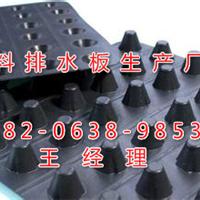 贵州遵义市排水板厂家专业生产塑料排水板
