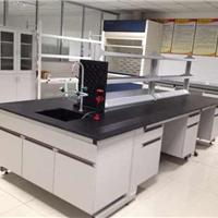 供应泉州实验室 实验台 通风柜 药品柜