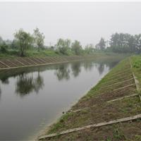 河道生态护坡系统