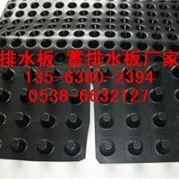 供应hdpe聚乙烯排水板高塑料车库顶板排水板