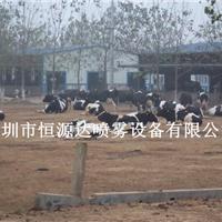 供应湖北枣阳养牛场车辆消毒