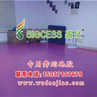 专业舞蹈地胶生产厂家 舞蹈专用塑胶地板