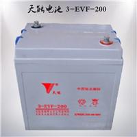 供应天能3-EVF-200