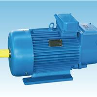 供应YZR系列起重电动机厂家直销