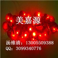 LED装饰灯、蔬果灯串、水果灯串
