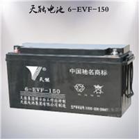 供应天能6-EVF-150