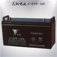 供应天能6-EVF-120