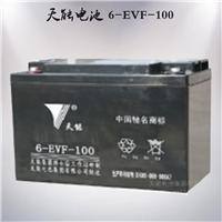 供应天能6-EVF-100