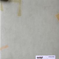 福建塑胶地板PVC地板LG惠宝儿童